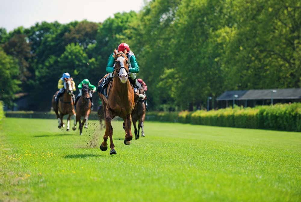 Straight from the horse's mouth: how this catering manager raced to a successful finish